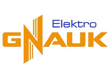 Elektro Gnauk
